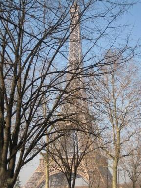 Eiffel in the Trees