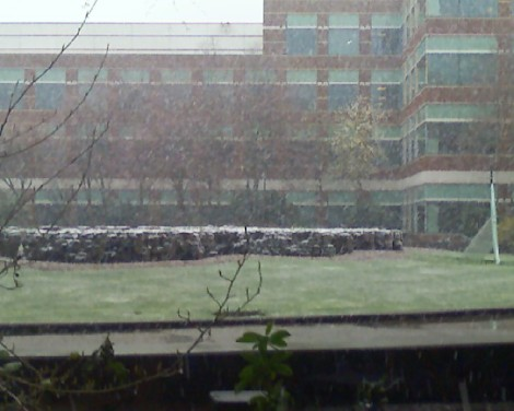 The View From My Office, 3/28/2008